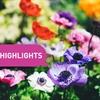 May Community Highlights